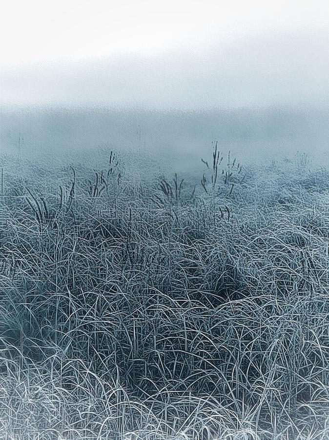Frigid Morn by Jill Love