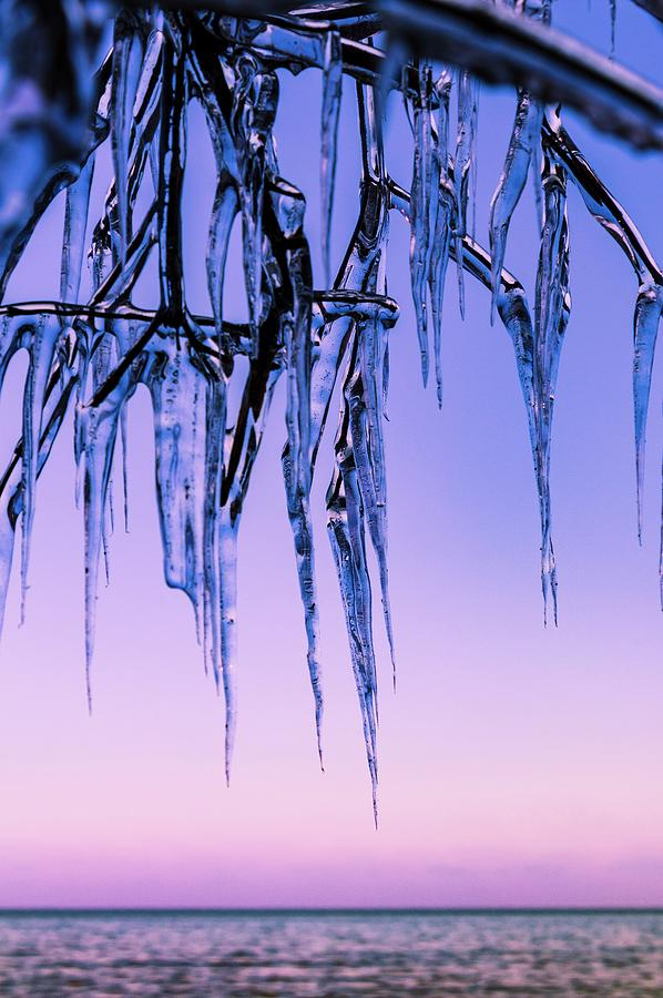 Ice Photograph - Fringe by Terri Hart-Ellis