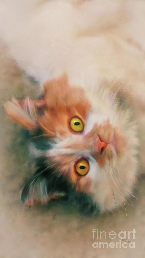 Cat Digital Art - Frisky by Lois Bryan
