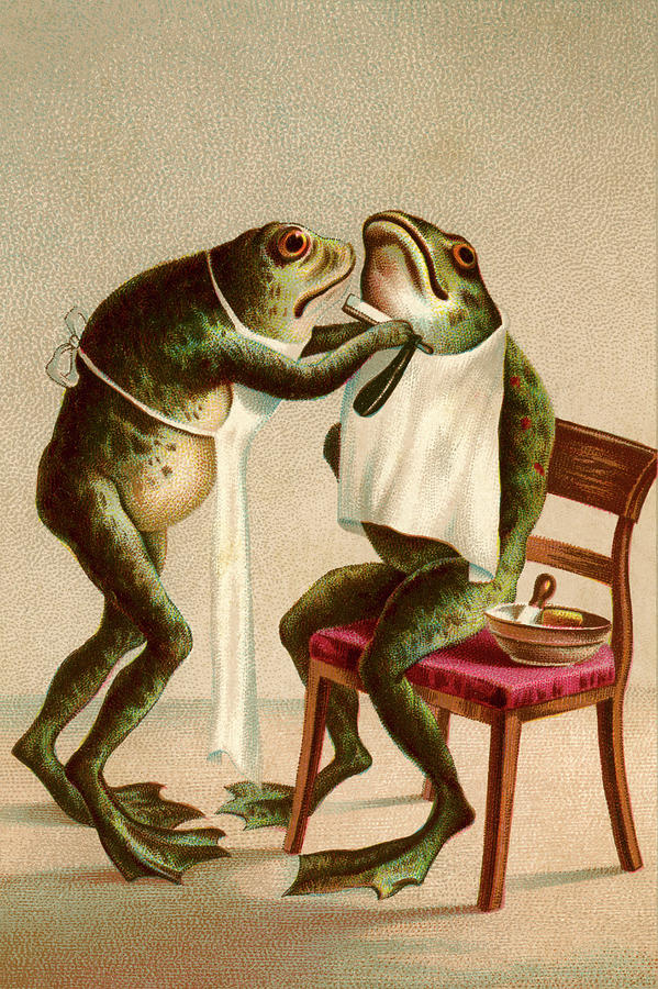 Frog Getting A Shave Digital Art by Graphicaartis