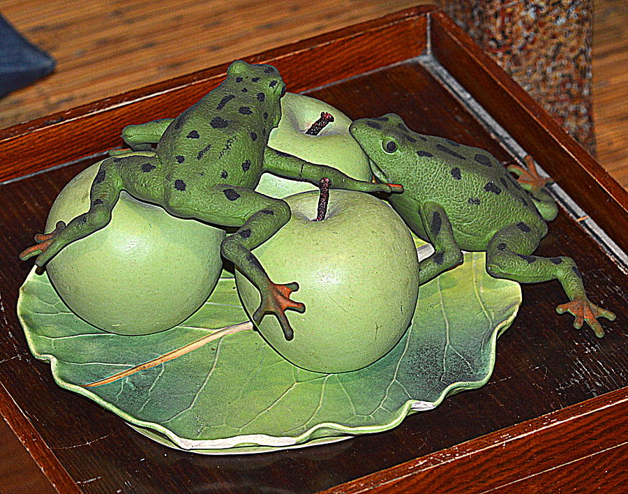 Frogs and Apples by Kimberly-Ann Talbert