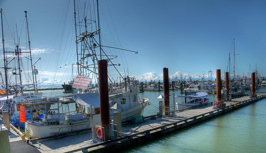 From Fishermans Wharf by Doug Matthews