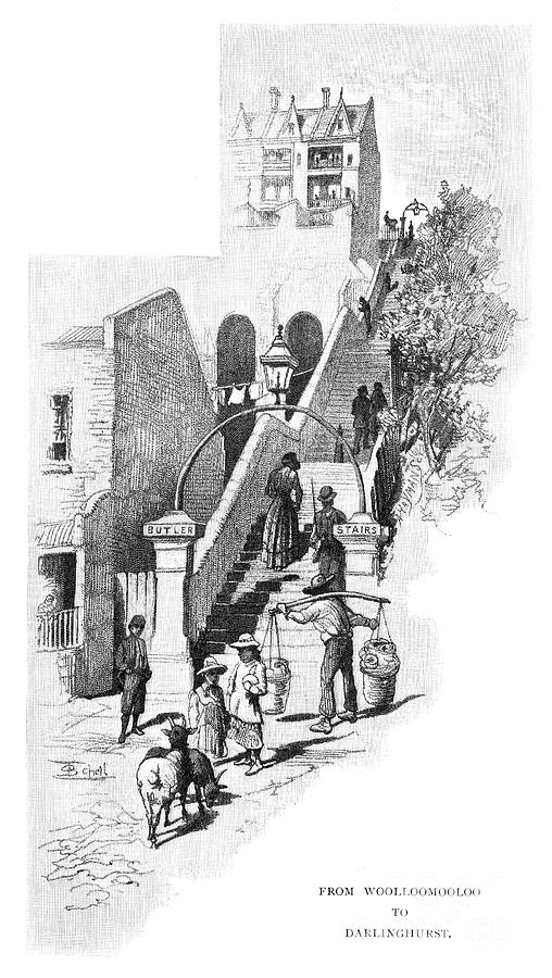 From Woolloomooloo To Darlinghurst Drawing by Print Collector