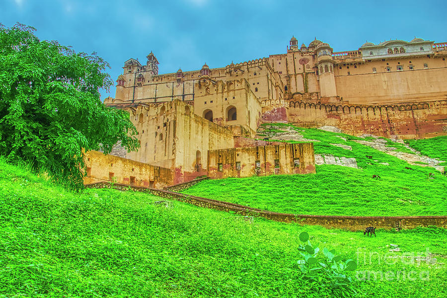 Front view of Amer Fort - India by Stefano Senise