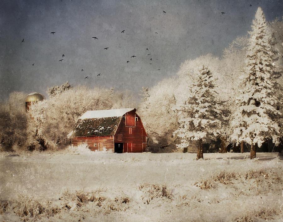 Frost Bitten by Julie Hamilton