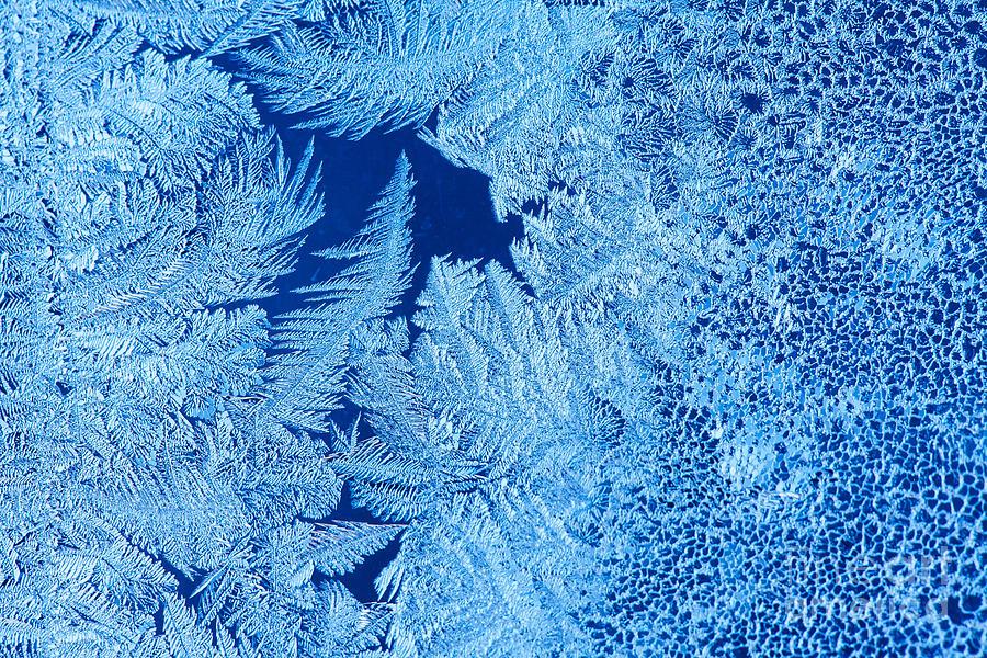 Sparkle Photograph - Frost Patterns On Window Glass by Andrey Krepkih