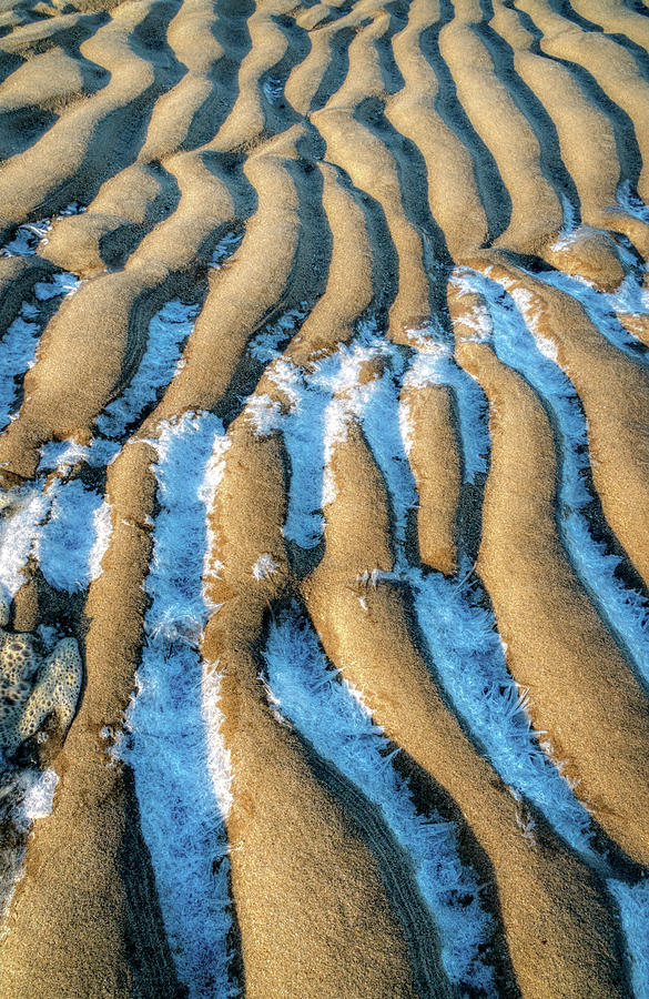 Frosted Tide Lines by Gary Slawsky