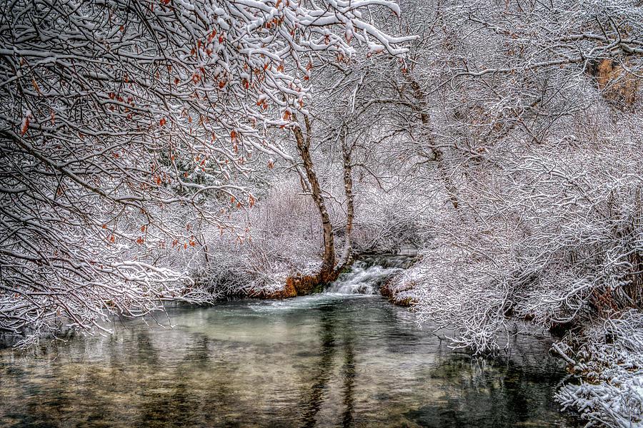 Frosty Pond by Fiskr Larsen