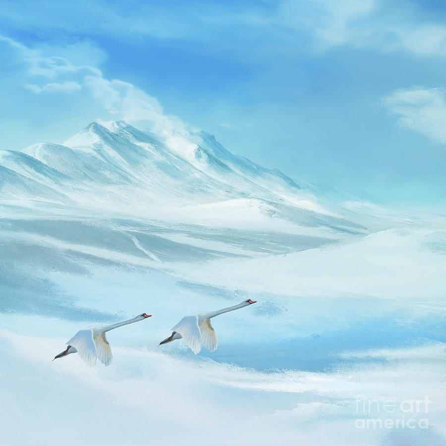 Frozen by Anne Vis