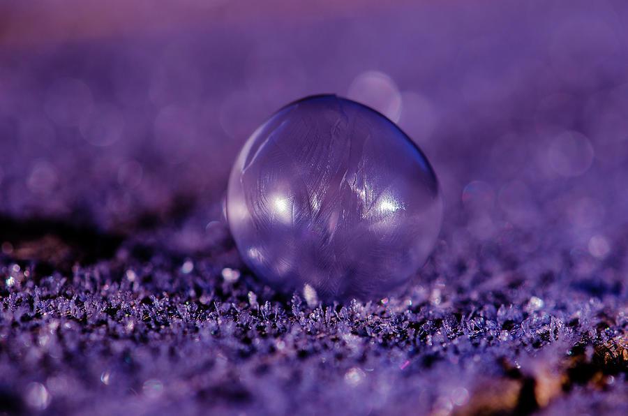 Frozen Bubble by Linda Howes