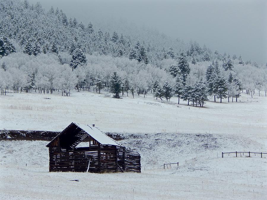 Frozen Barn by Dan Miller