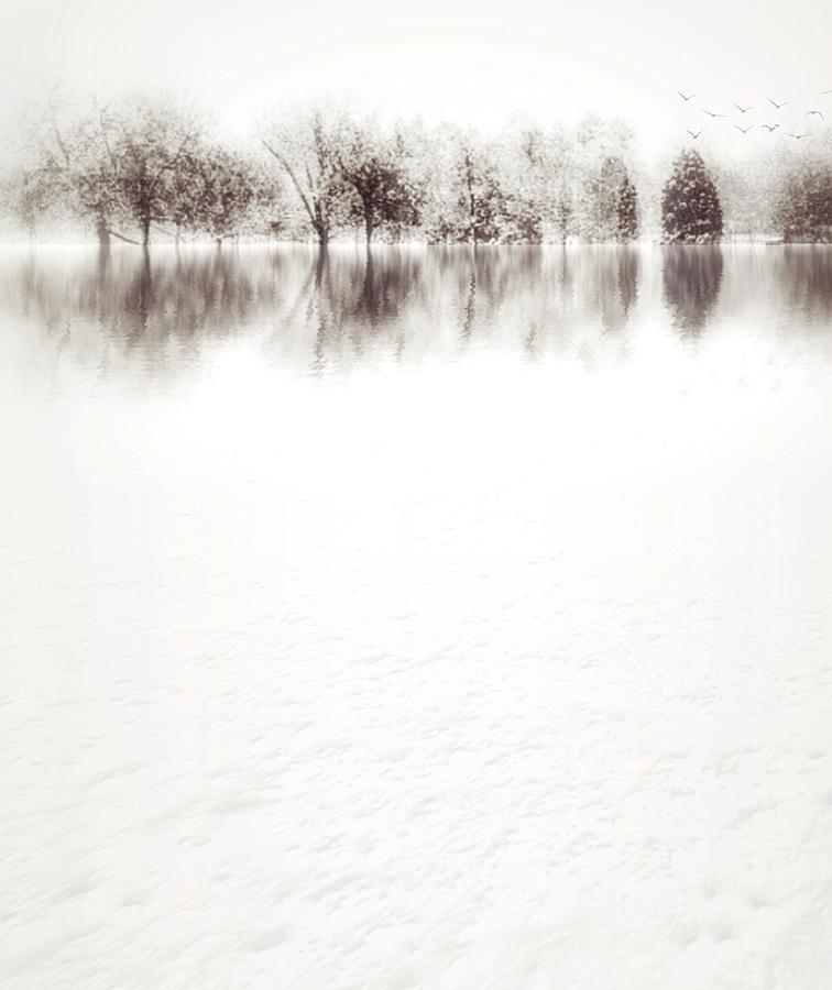 Frozen by Dan Stone