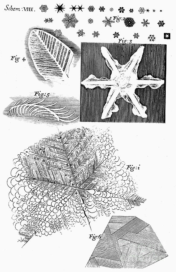 Frozen Materials Viewed By English Drawing by Print Collector