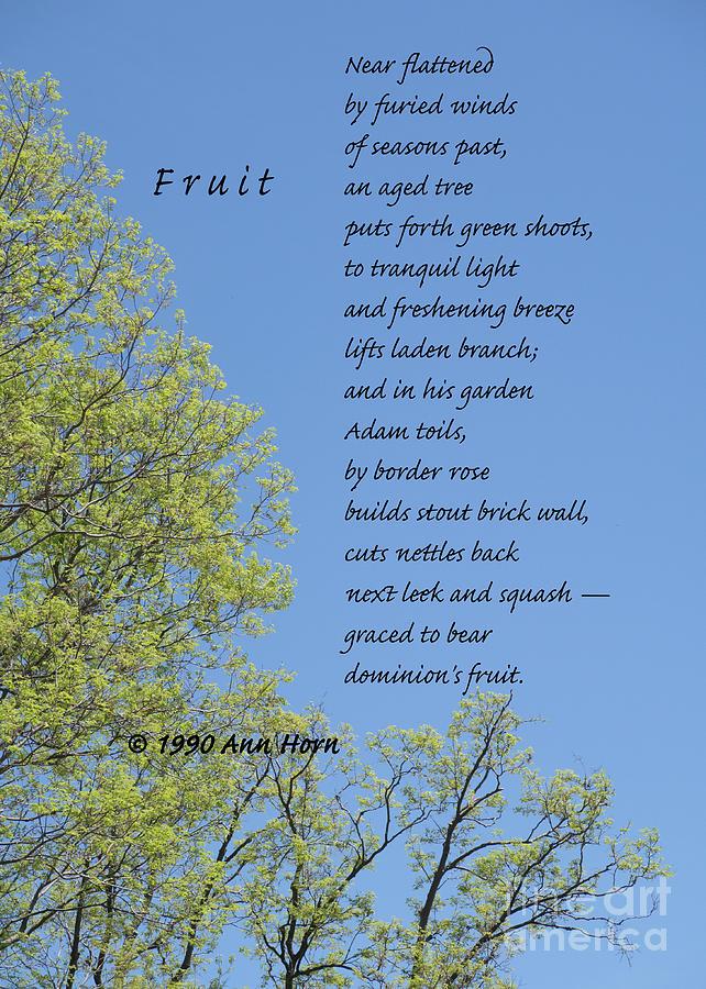 Fruit by Ann Horn