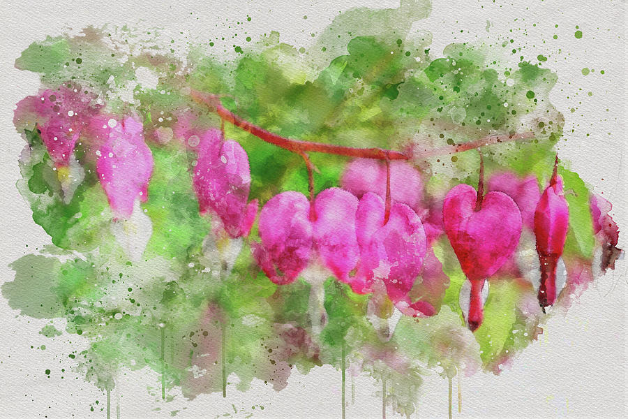Bleeding Hearts 2 by Marilyn Wilson