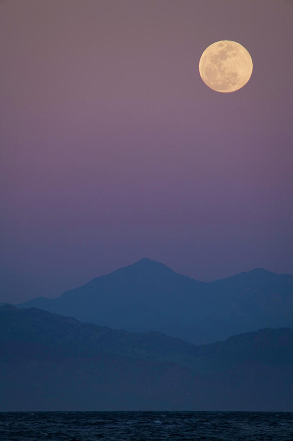 Full Moon On Purple Sky Photograph by Goldhafen