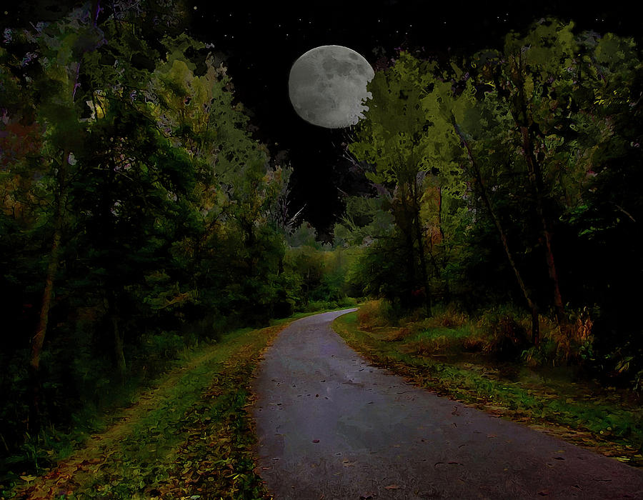 Landscape Photograph - Full Moon Over Forest Trail by Cedric Hampton