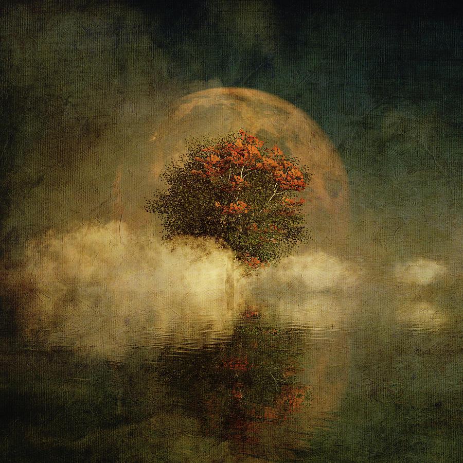 Full moon over misty water by Jan Keteleer