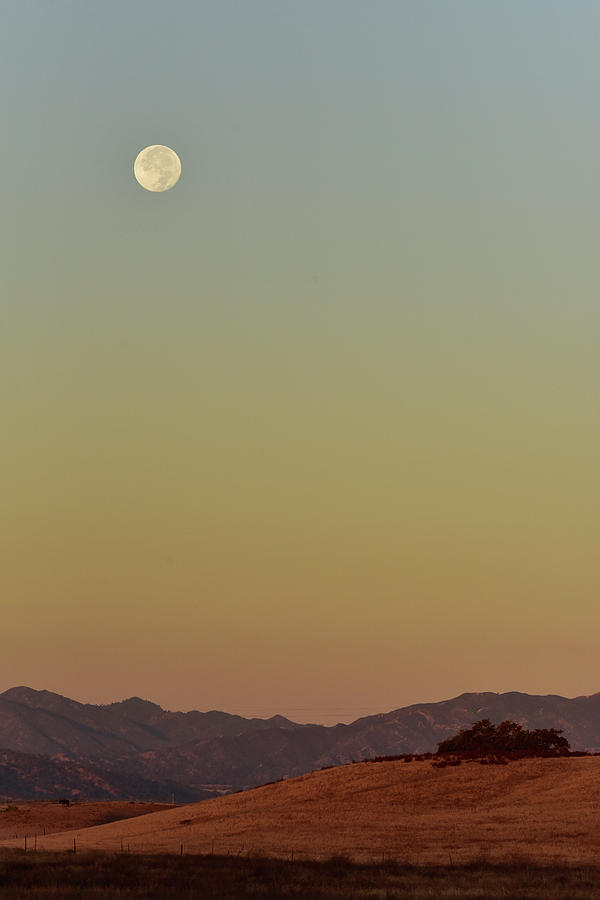 Full Moon Setting by Cindy McIntyre