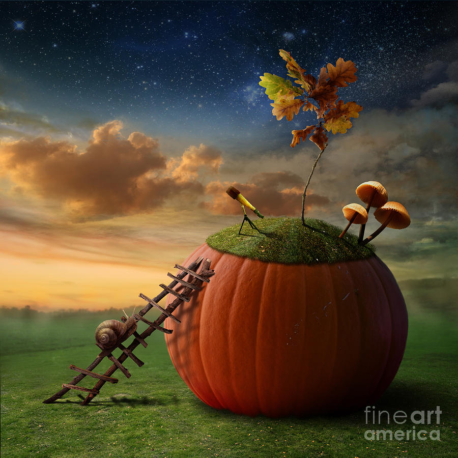 Snail Digital Art - Funny Poster With Snail-astronomer And by Oxa
