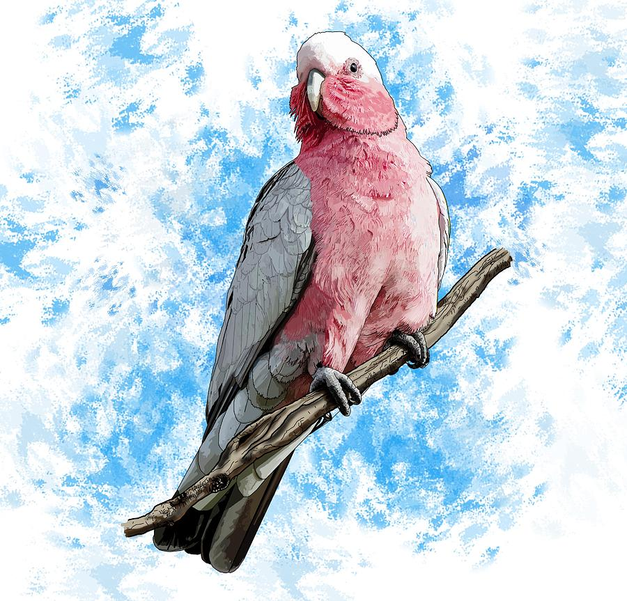 Stratton Digital Art - G Is For Galah by Joan Stratton