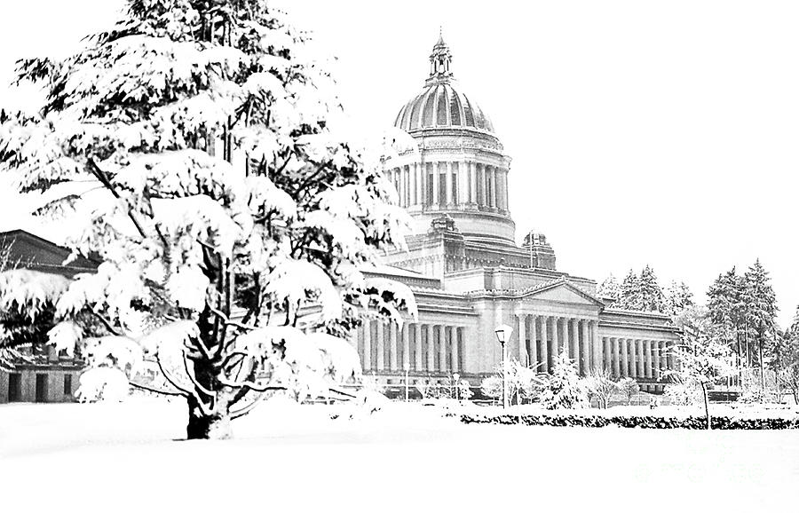 THE CAPITOL IN WINTER 1950 by Merle Junk