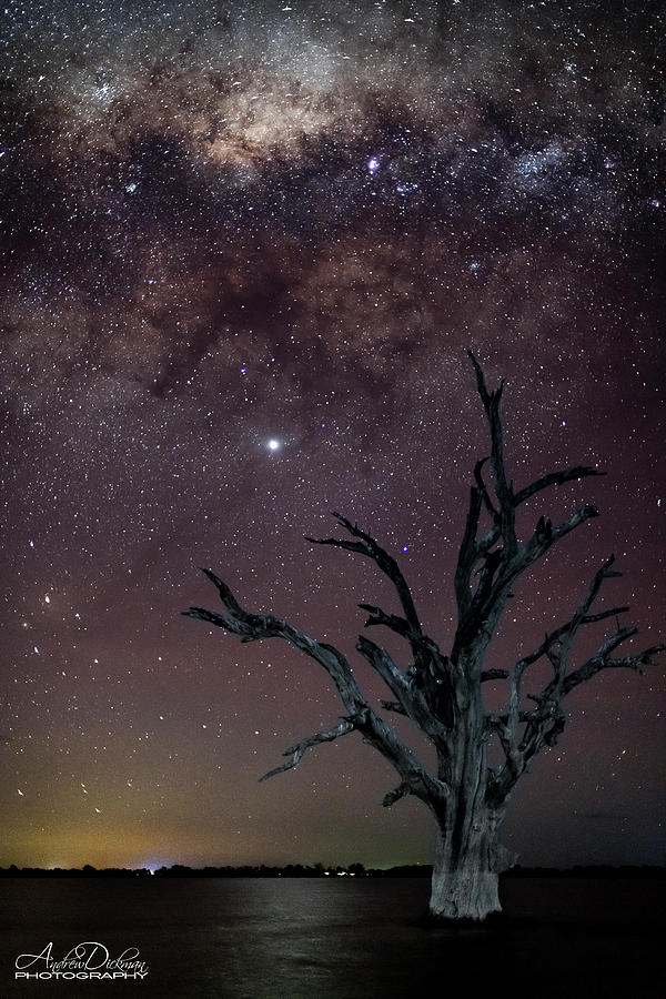 Galactic Frontier by Andrew Dickman