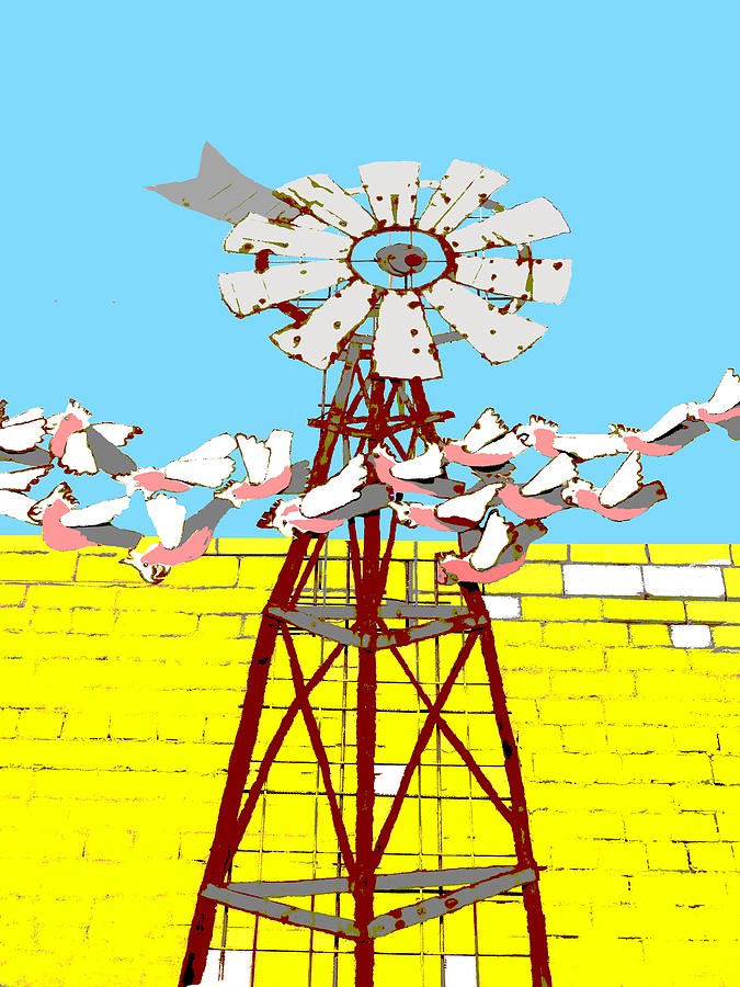 Galahs in Flight - Windmill by Lexa Harpell