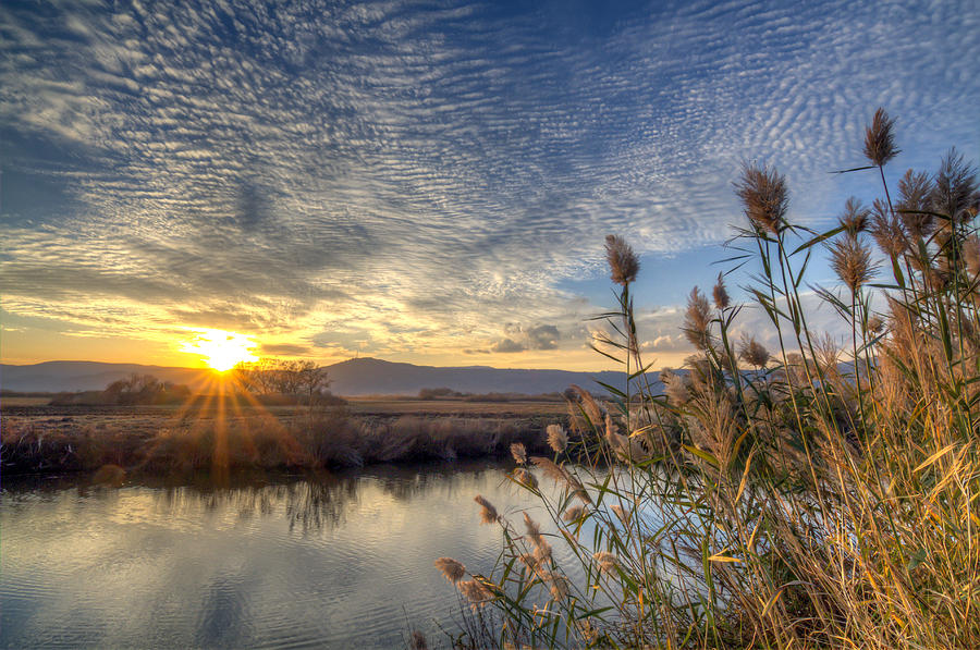 Galilee sunset view  by Alon Mandel