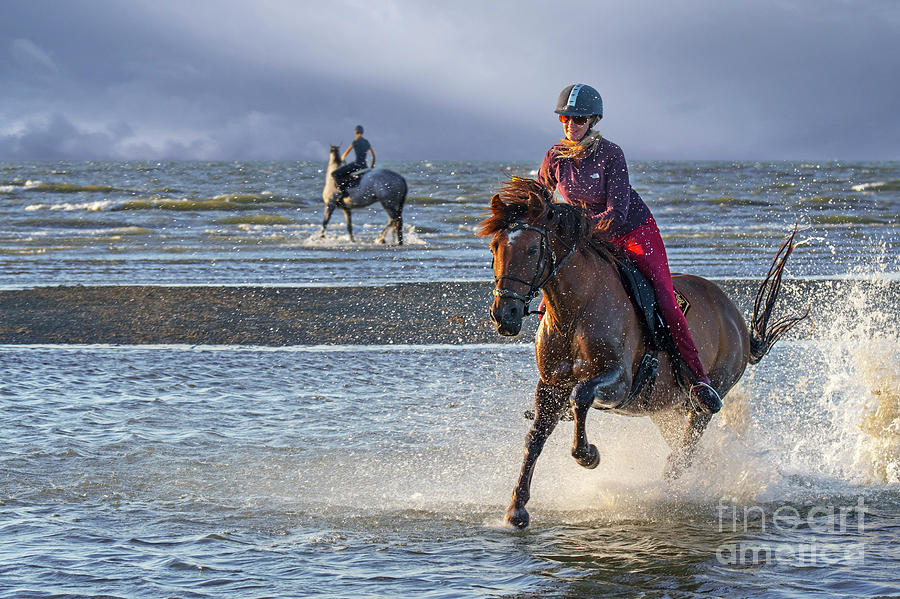 Galloping on the Beach by Arterra Picture Library