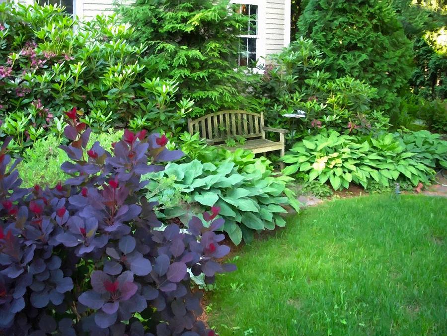 Garden Bench Serenity Painting Digital Art by Sandi OReilly