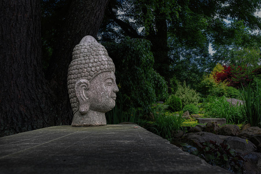 Garden Buddha Sculpture by Tom Mc Nemar
