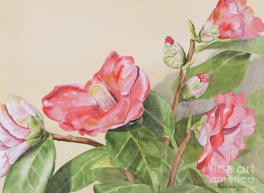 Flowers Painting - Garden Camellias by Pamela Schick