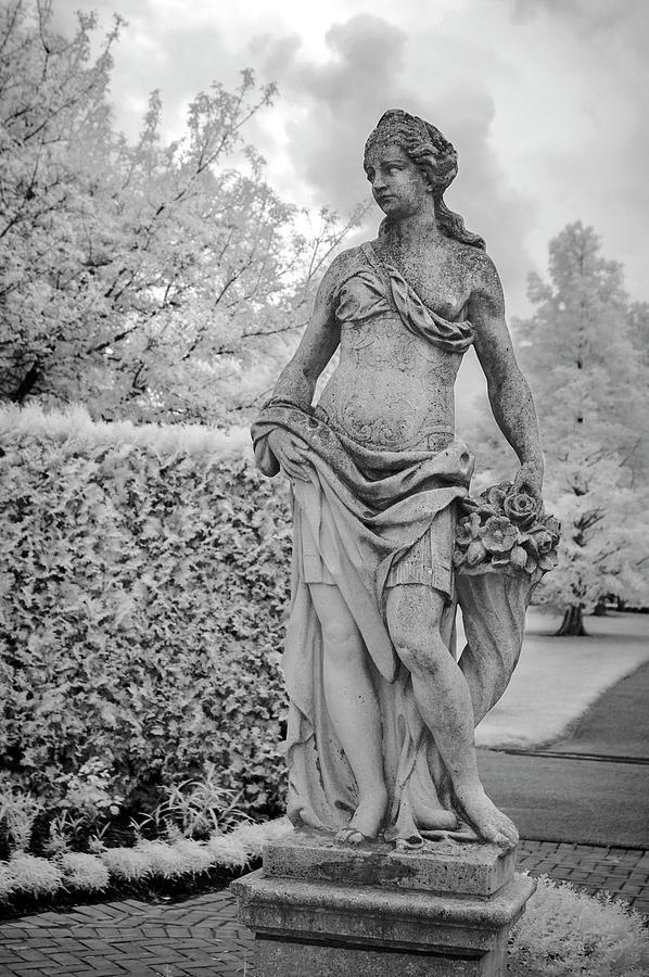 Garden Goddess by Jill Love Photo Art