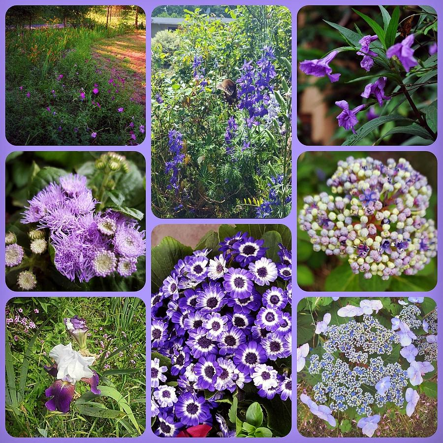 MY GARDEN IN PURPLES COLLAGE by Pamela Smale Williams