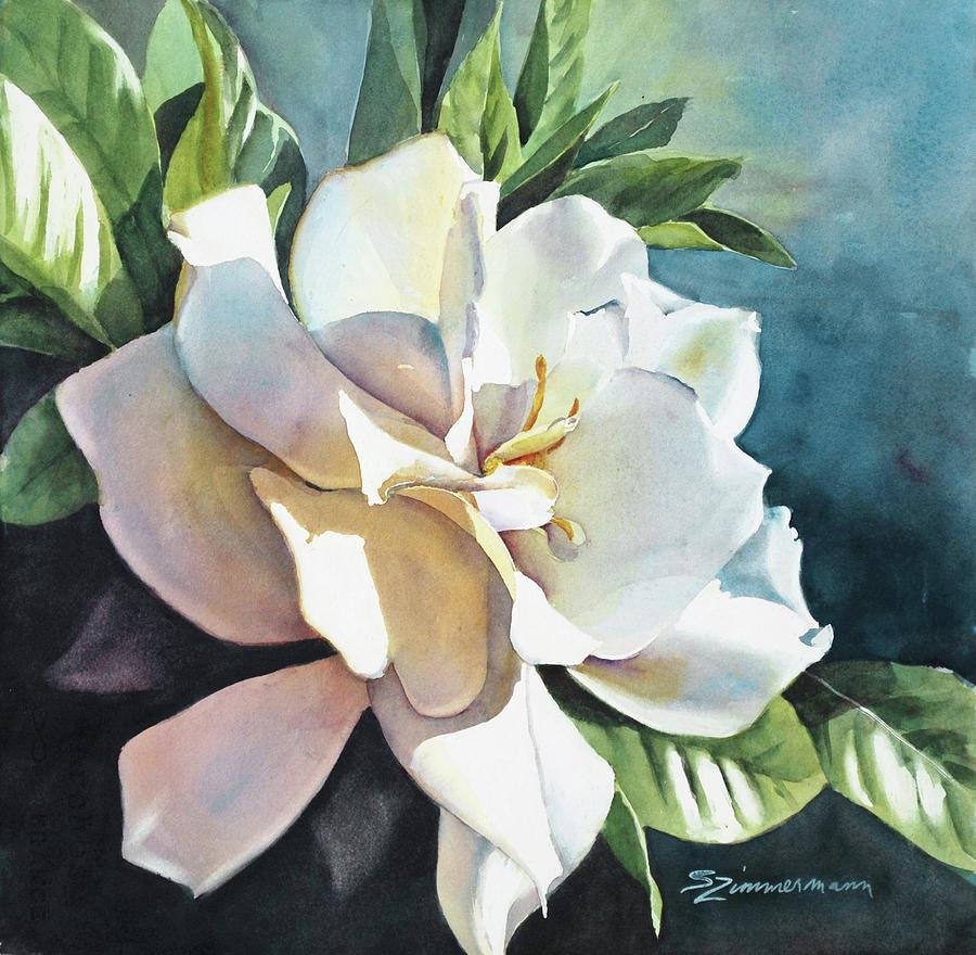 Gardenia by Sue Zimmermann