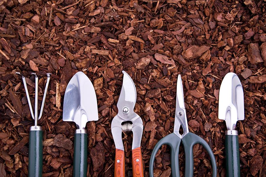 Trowel Photograph - Gardeningxl by Liliboas