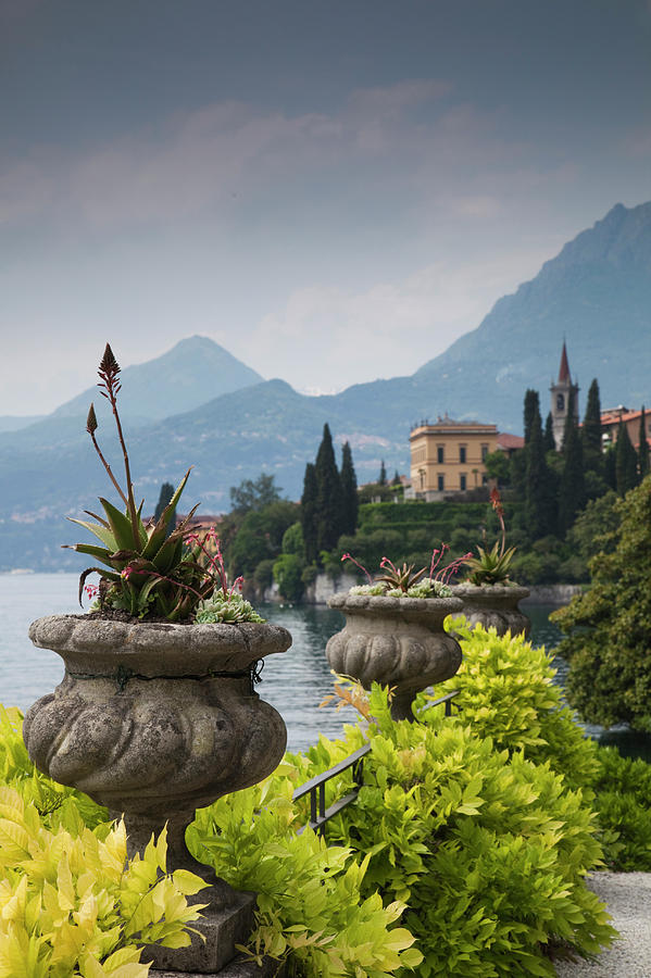 Gardens And Lakefront, Villa Monastero Photograph by Walter Bibikow