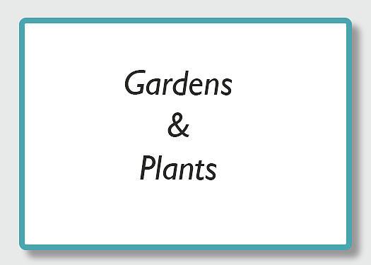 gardens by Kathy Adams Clark