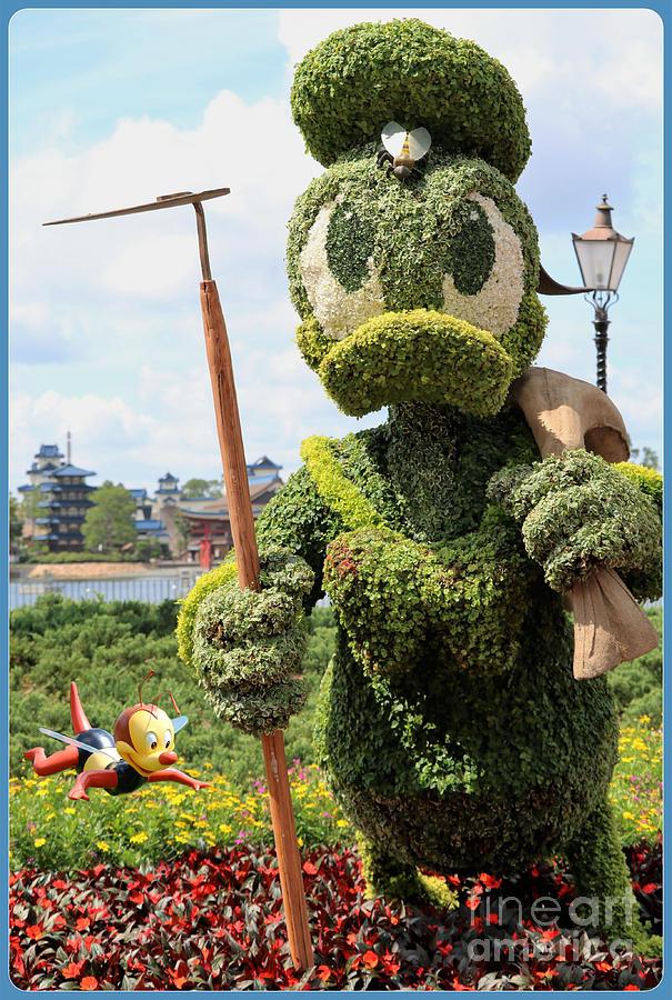 Gardener Donald Bee Keeper Photograph