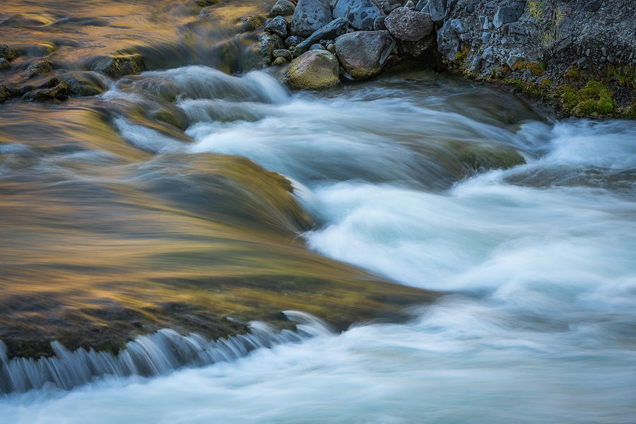 Gardner River Collective VIII by Ann Skelton
