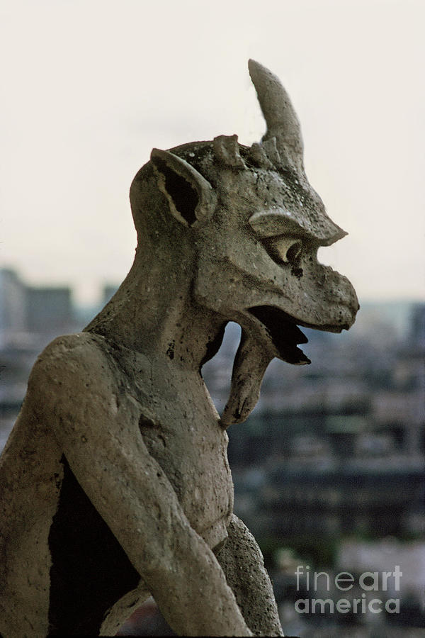 Gargoyles Notre Dame Cathedral, Paris France April 1978 by California Views Archives Mr Pat Hathaway Archives