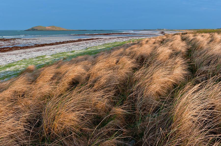 Britain Photograph - Garrynamerie machair, South Uist by David Ross
