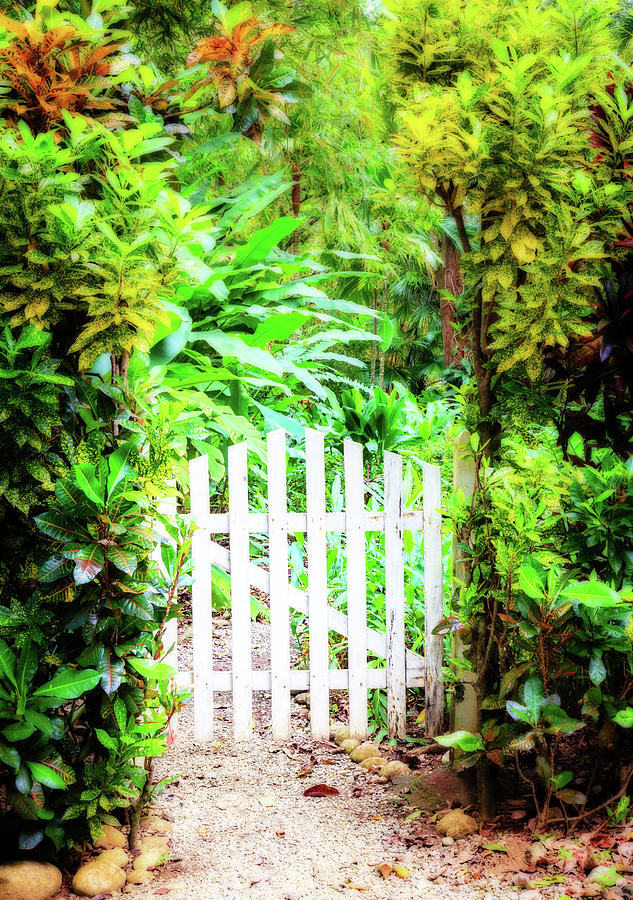 Gate To A Tropical Paradise Photograph