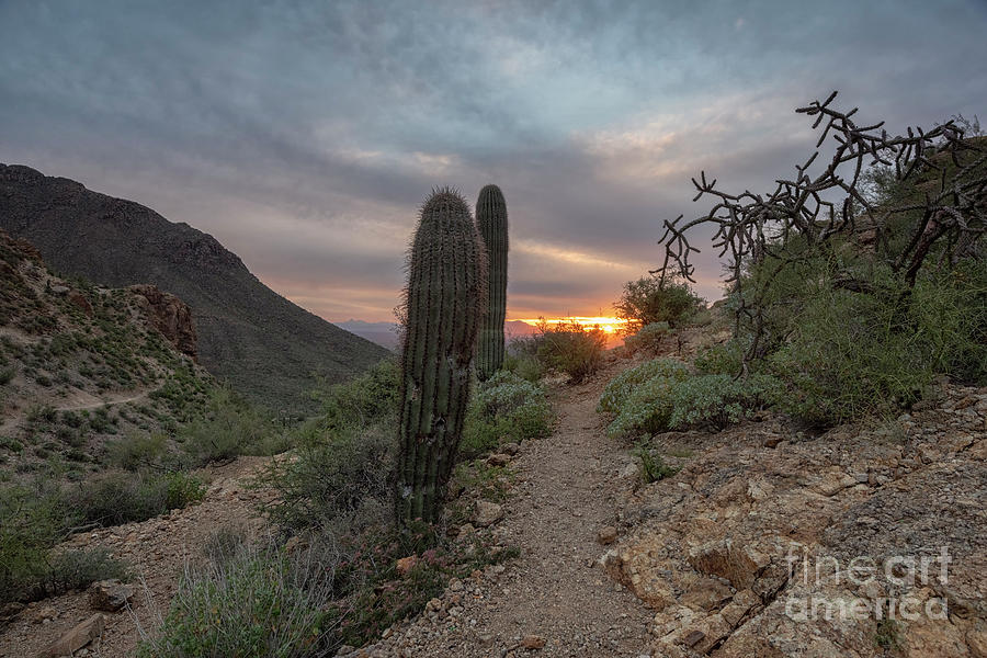 Gates Pass Sunset Trail by Mike Dawson