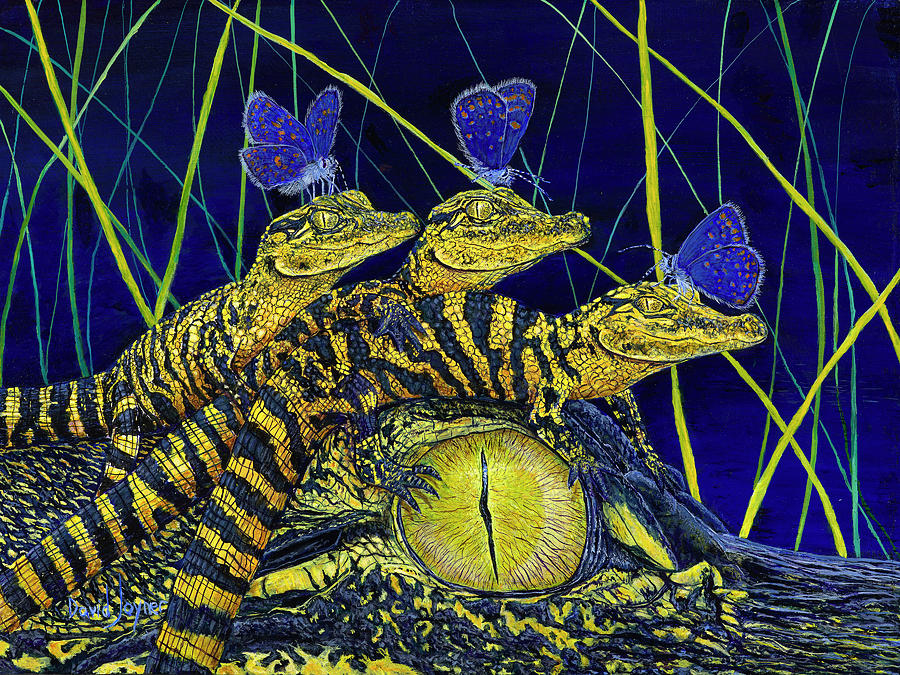 Gator Nursery  by David Joyner