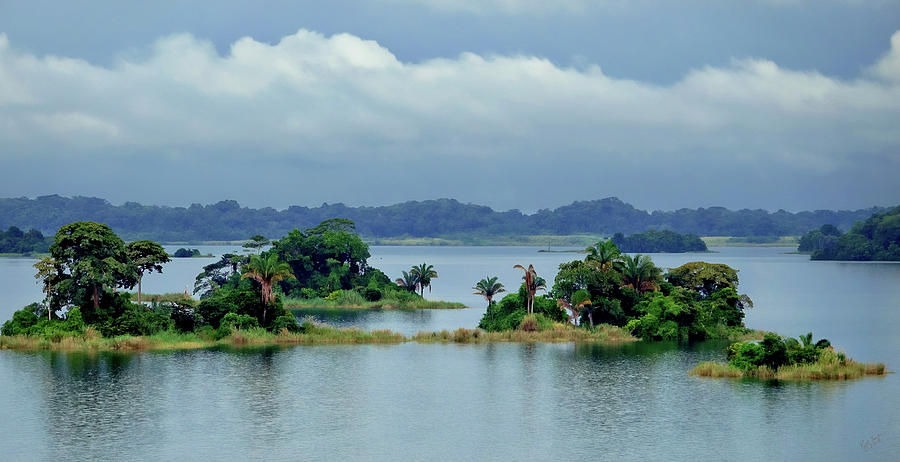 Panama Photograph - Gatun Lake Islands by Rick Lawler