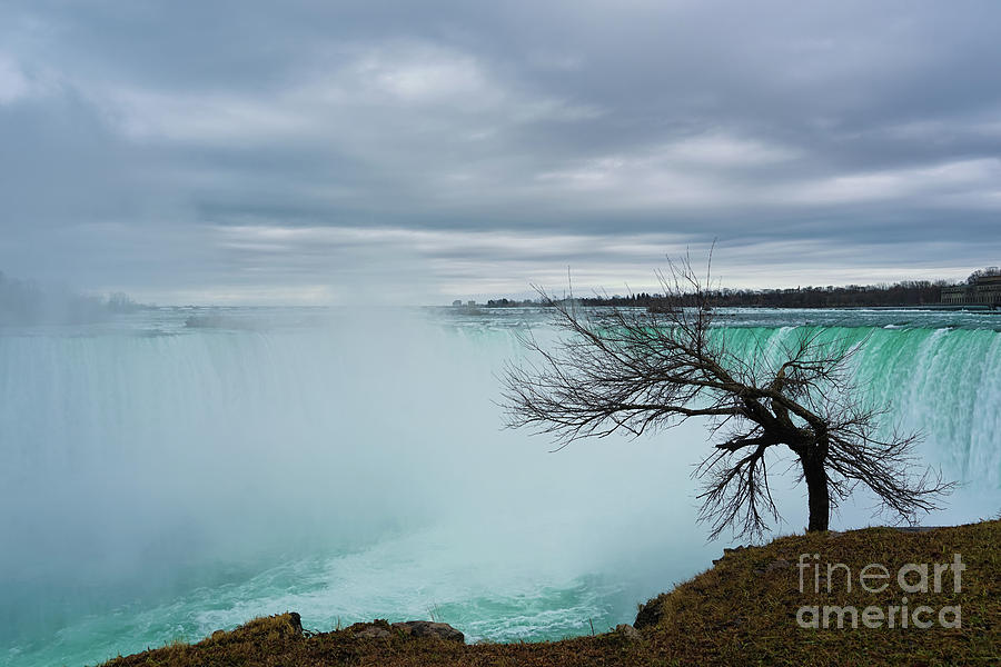 Gazing at Horseshoe Falls by Rachel Cohen