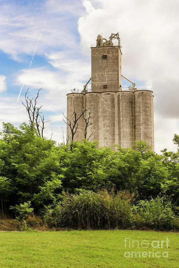 Geary Grain Elevator by Imagery by Charly