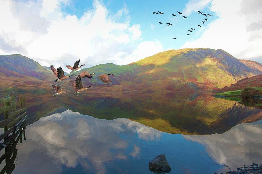 Geese Take Flight by Roy Pedersen